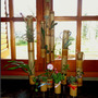 Original: Jardin Vertical Ecologico En Caña Bambú.