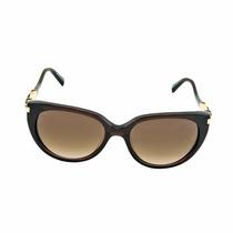 Óculos De Sol Ana Hickmann Ah9192 E01