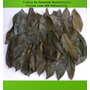 Folhas De Graviola Desidratadas 120g/300 Folhas Secas P/ Chá