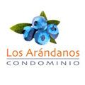 Proyecto Condominio Los Arándanos