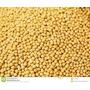 Mostaza Amarilla En Grano Importada X 5kg