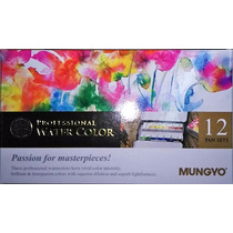 Acuarelas Profesionales Mungyo Gallery X 12 Colores