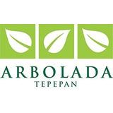 Desarrollo Arbolada Tepepan