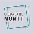 Proyecto Ciudadano Montt