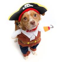 Disfraz De Pirata - Edición Limitada
