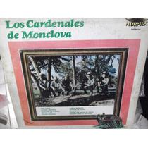 Los Cardenales De Monclova Lp