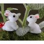 5 Coelhinhos Terrários Mini Jardim Miniatura Casinhas