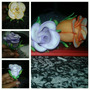 Canetas Personalizadas Com Flores