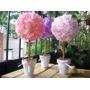 Arbolitos Con Flores - Topiarios Hemrosos Con Flores De Tela