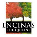Proyecto Encinas De Quilín Ii