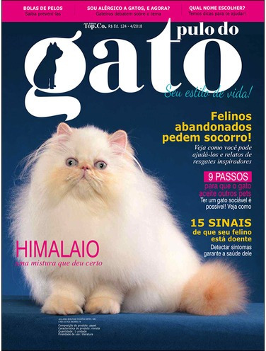 REVISTA PULO DO GATO PDF DOWNLOAD