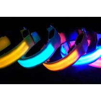 Collar Para Mascota Led Multicolor Varias Tallas