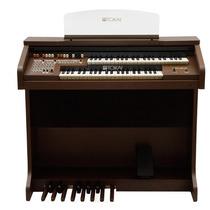 Órgão Eletrônico Tokai - Md10 Ii Marrom Vengue