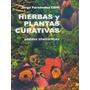 Hierbas Y Plantas Curativas Fernandez Chitti Condorhuasi