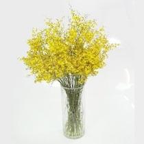 Orquídeas Chuva De Ouro 10 Galhos Grandes Artificial Flores