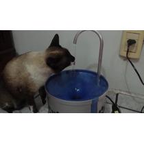 Bebedouro Para Gatos - Com Bomba D
