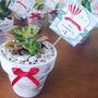 Souvenirs Macetas Pintadas Con Suculentas/cactus Cumple Boda