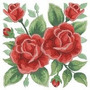 Matriz De Bordado 60 Rosas Perfeitas Em Pes Ou Jef.