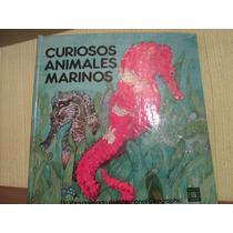 Libro De Tercera Dimensión Animales Marinos Curiosos Antig