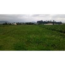 Toluca 11,000 M2 A15 Min. Del Aeropuerto A Pie De Carretera