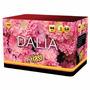 Torta Dalia 44t - Fuegos Artificiales - Cienfuegos