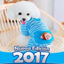 Kit Imprimible De Ropa Para Perros Patrones Y Moldes Negocio