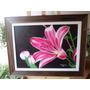Quadro/pintura Artesanal/tela Lirio/50x70/tinta A Oleo/aguia