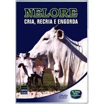 Dvd: Nelore - Cria, Recria E Engorda