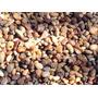 Piedras Jardin Canto Rodado - Piedra De Rio Lavada