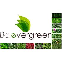 Muro Verde Privacidad Plantas Artificial Decoracion