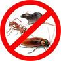 Fumigacion, Cucarachas, Ratas Y Otras