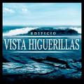 Proyecto Vista Higuerillas