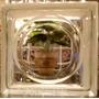 Ladrillos De Vidrio Liso Modelo Ovalo Checo Unico Importado