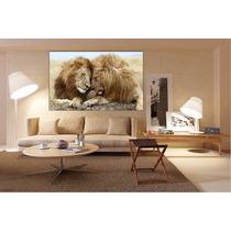 Felino Leon Bastidor Tela Canvas De 100x60cm Exelente