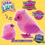 Pets Little Live Corujinhas - Rosa Dtc Compre-agora