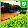 Paisajismo Jardineria Limpieza De Terrenos Parques Poda Tala