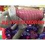 Campera Inflable 50 Cm Pointer Labrador Morón Julypets