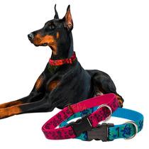 Collar Para Perro Grande 51 Cm Lupine