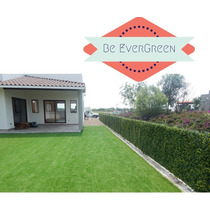 Pasto Artificial Sintetico Residencial Be Evergreen