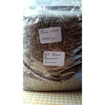 Semilla De Pasto Importada, Paquete De 1000 Gr.