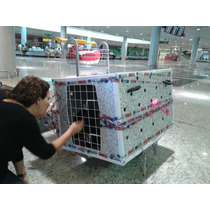 Kennel De Transporte