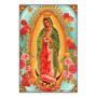 N. S. Guadalupe