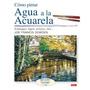Cómo Pintar Agua A La Acuarela: Estanques, Lago Envío Gratis
