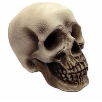 Cráneo Espuma Realista