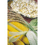 Semente De Milho Para Pipoca Profissional Saco 1kg