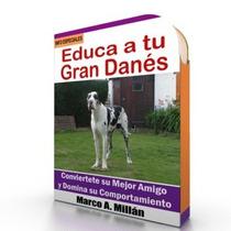 Como Educar A Un Perro Gran Danes - Videos Paso A Paso