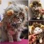 Gorro Melena De León Para Gatos - Gatitos