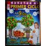 Revista Maestra De Primer Ciclo (número 93, Julio 2005)