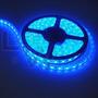 Tira Led Azul 3528 5m Int/ Exterior Siliconada Ip65 + Fuente