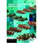 Iniciación Al Ajedrez Para Niños - Varios Autores (pai)